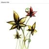 植物花纹图-花纹背景图片