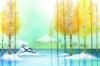 夏天风景图-风景图片