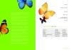 缤纷色彩图片-缤纷色彩图-艺术欣赏图库