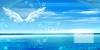 海豚湾恋人x寸图片-天之翼图-影楼摄影设计图库