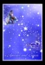 水瓶座巨蟹座图片-星语星愿图-影楼摄影设计图库