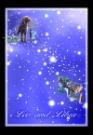 狮子座天秤座图片-星语星愿图-影楼摄影设计图库