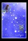 狮子座射手座图片-星语星愿图-影楼摄影设计图库
