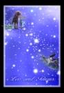 狮子座金牛座图片-星语星愿图-影楼摄影设计图库