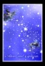 金牛座魔蝎座图片-星语星愿图-影楼摄影设计图库