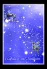 魔蝎座射手座图片-星语星愿图-影楼摄影设计图库