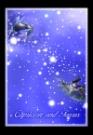 魔蝎座金牛座图片-星语星愿图-影楼摄影设计图库