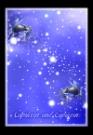 魔蝎座魔蝎座图片-星语星愿图-影楼摄影设计图库