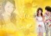 跨页婚纱模板潘帕斯之舞图片-温柔情绪图-影楼摄影设计图库