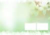 白色恋人图片-爱乐园图-影楼摄影设计图库