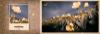 永恒的爱图片-风花树系列图-影楼摄影设计图库